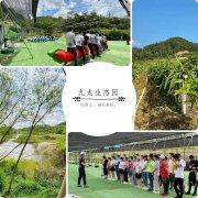 深圳春游值得一去的农家乐野炊郊游活动的好地方